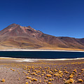 Laguna Miniques And Miniques Volcano Chile by James Brunker