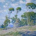 Laguna Trees by Guy Rose