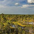 Lahemaa Panorama From Above by Sandra Rugina