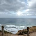 La Jolla Cliffs by Joan Baker