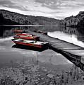 Lake And Boats by Lj Lambert