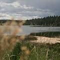 Lake by Ashlyn Yates