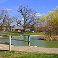 Lake At Schiller Park by Laurel Talabere