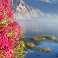Lake Atitlan Beauty by Rianna Stackhouse