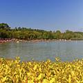 Lake Balaton, Hungary by Elenarts - Elena Duvernay photo