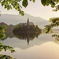 Lake Bled In The Morning by Travel and Destinations - By Mike Clegg