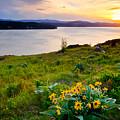 Lake Coeur D'alene Spring by Idaho Scenic Images Linda Lantzy