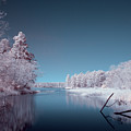 Lake Cove In Infrared by Todd Aaron