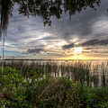 Lake Dora by Ronald Kotinsky