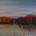 Quiet Lake Morning At Lake Dunn Village Creek State Park Ar by Lizi Beard-Ward