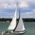 Lake Erie Sailing 8092 by Guy Whiteley