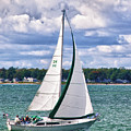 Lake Erie Sailing 8092h by Guy Whiteley