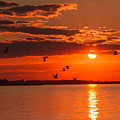 Lake Erie Sunset 7999 by Jerry Lohman
