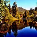 Lake Fulmor - Idyllwild, Ca by Sherri Hasley