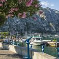 Lake Garda Harbour Of Limone Sul Garda by Melanie Viola