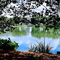 Lake Hamilton by Images By CEF