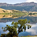 Lake Hayes New Zealand by Mark Duffy
