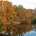 Lake Helene And Fall Foliage by Thomas Marchessault