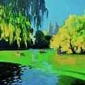 Lake In Central Park Ny by Eduard Zenuni