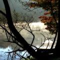 Lake In Wood by Jim Turri