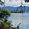Lake Islet by Debra Casper