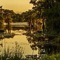 Lake Martin 2 by Kristopher Bedgood
