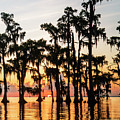 Lake Maurepas Sunrise Triptych No 1 by Andy Crawford