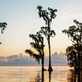 Lake Maurepas Sunrise Triptych No 2 by Andy Crawford
