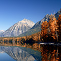 Lake Mcdonald Autumn by Lawrence Boothby