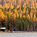 Lake Mcdonald Boatshed by Nicholas Blackwell