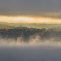 Lake Mist Triptych II by Michele Steffey