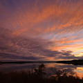 Lake Moss 2504b by Ricardo J Ruiz de Porras