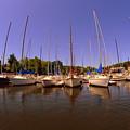 Lake Murray S C Marina by Lisa Wooten