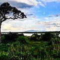 Lake Ndutu Shores by Remy Simon