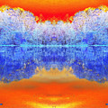 Lake Of Many Colors  by Scott D Van Osdol