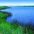 Lake Of The Shining Waters Prince Edward Island by Thomas R Fletcher