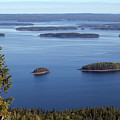 Lake Pielinen With Fir by Aivar Mikko