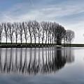 Lake Reflection by Daliana Pacuraru