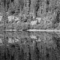 Lake Reflections In Black And White by Bruce Block