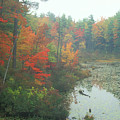 Lake Rohunta Foliage by John Burk
