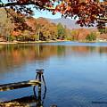 Lake Scene by Melody Meadows