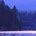 Lake Shasta Bridge by Sarah Avignone
