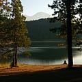 Lake Siskiyou  by Marisa Al