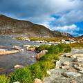 Lake Summit Tundra Path by Angelina Vick
