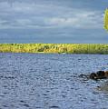 Lake Superior Shoreline After A Brief Storm by Vincent Duis