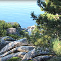 Lake Tahoe And Boulders by Joy Patzner