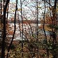 Lake Wallenpaupack Through The Trees by Judith Rhue
