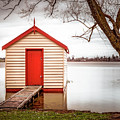 Lake Wendourie Boathouse by Cate O'Donnell