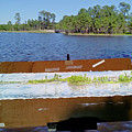 Lake Woodland Panoromic View-spring by TD Wilson