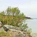Lake033 by Jeff Downs